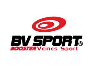 Logo BV Sport_gall